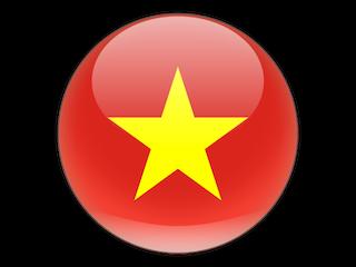 Binh Thai Dao Kung Fu